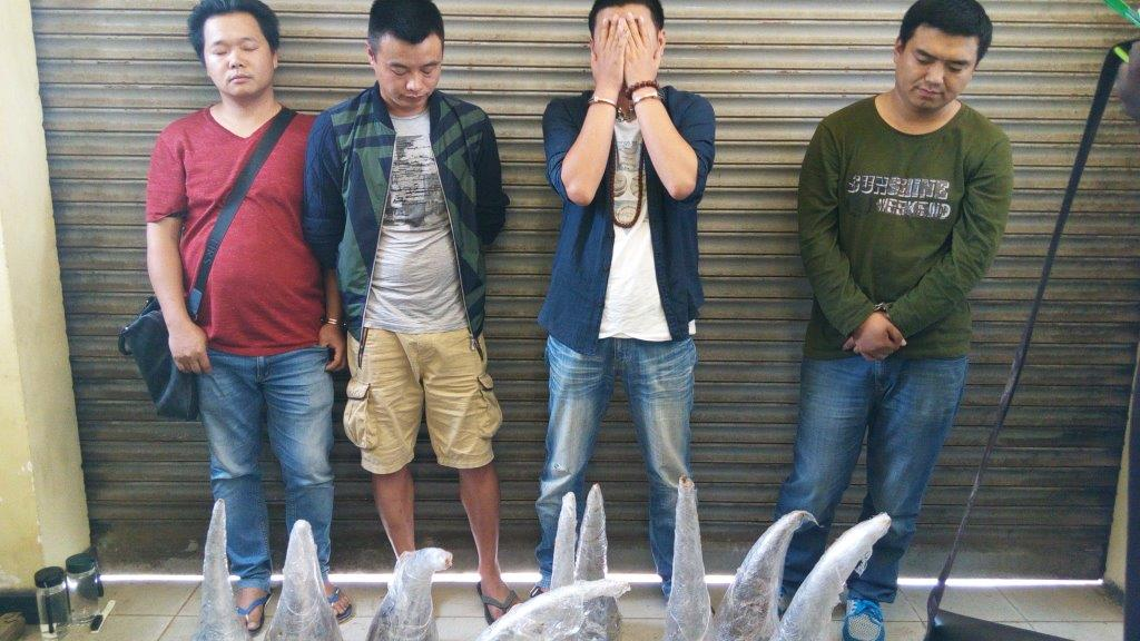 EAL - Chinese rhino traffickers 01