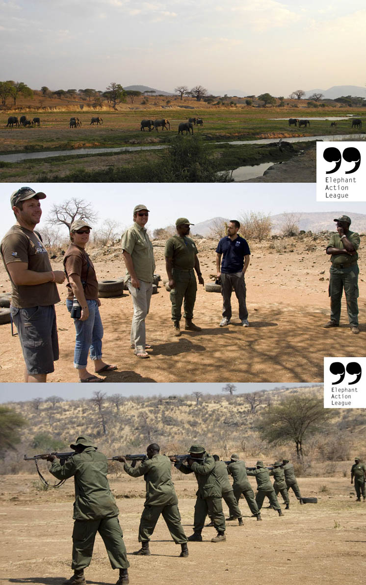 Elephant Action League-PAMS anti-poaching project in Tanzania
