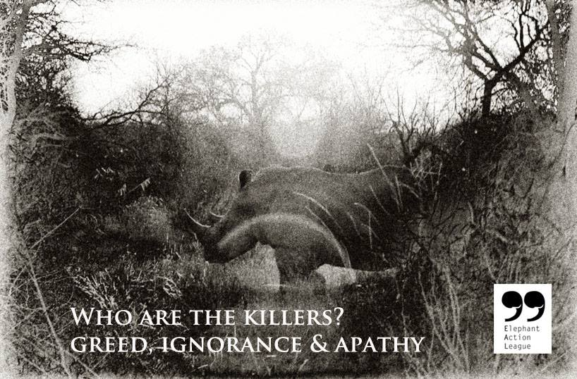 Elephant Action League - World Rhino Day