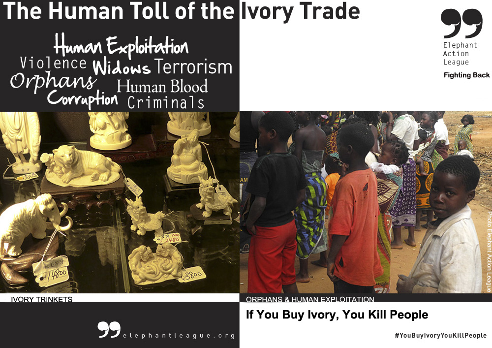 Human Toll Ivory Trade SECOND Poster - Campaign ENG2