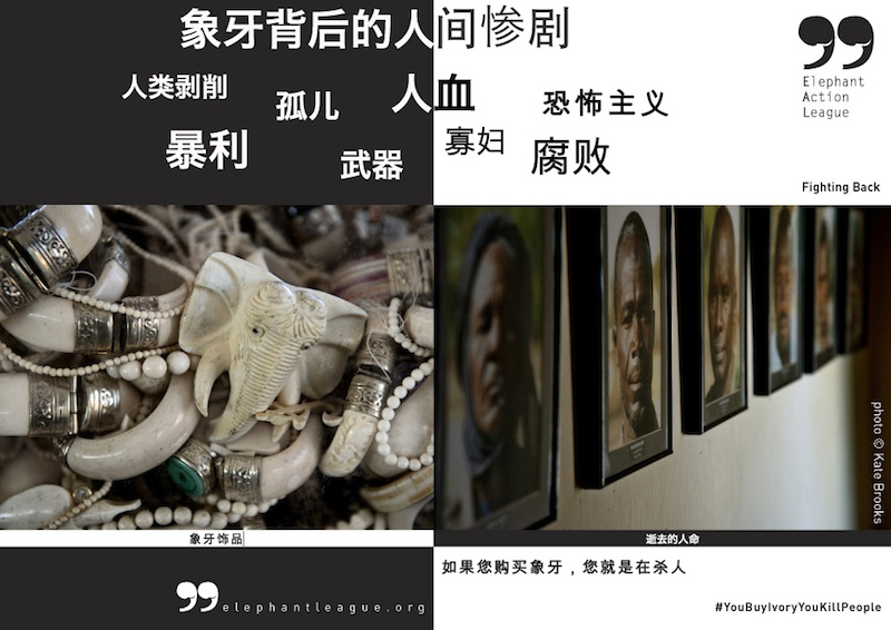 Human Toll Ivory Trade poster - Chinese small