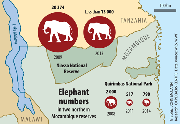 Mozambique elephants obliterated