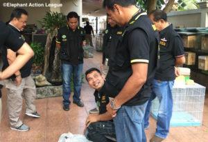 Operation Wildlife EAL Thai 03